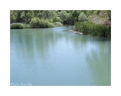 the river (Lola Honrubia) Tags: charcoazul rio jucar albacete lolahonrubia canon g16 mayo