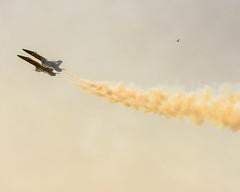 Aerial Pursuit (rikioscamera) Tags: blueangels fa18 huntingtonbeach usnavy aircraft airshow d750 jet lightroom military nikon bird haze seagull