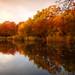 Wake Valley Pond, Epping - dawn 10
