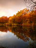 Wake Valley Pond, Epping - dawn 10 (Marek Ziebart) Tags: 10faves woodland 15faves autumnalcolours 20faves 100views 30faves 200views landscape flickr composition color autumn reflection wood uk 500views dawn 50faves countryside nature paysage paesaggi landleben paisaje water