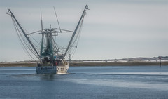 Miss Melissa (Marc_714) Tags: marc714 boat trawrler shrimp beaufort nc