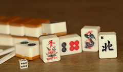 mah jongg (berber hoving) Tags: monday macro pieces game mahjongg macromondays memberschoicegamesorgamepieces