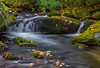 Autumn Cascade (Ping...) Tags: gsmnp greatsmokeymountains smokies fall autumn creek flow boulder moss leaves stream light cascade greatsmokeymountainsnationalpark nationalpark