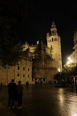 XE3F6209 (Enrique Romero G) Tags: giralda plaza place triunfo sevilla spain night noche nocturna lluvia fujinon18f2 fujixe3