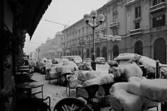 DSC_2706_4057.  It's snowing. - Nevica. (angelo appoloni) Tags: piemonte cuneo corso nizza bar palazzi neve bianco e nero piedmont palaces snow black white