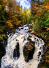 The Black Linn Falls (Barry Carr) Tags: woodland hdr perthshire landscape sonyalpha forest sonya6000 samyang12mmf20 autumn sony a6000 samyang thehermitage dunkeld