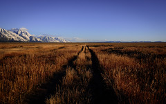 The road (Breck Miller) Tags: grandteton wyoming jackson america nationalparks landscape nature mountains sky bigsky