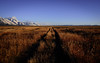 The road (Breck Miller) Tags: grandteton wyoming jackson america nationalparks landscape nature mountains sky bigsky