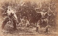 Aboriginal Corroboree - circa 1900 (Aussie~mobs) Tags: native corroboree aborigine australia dance ceremony indigenous vintage aussiemobs