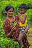 Mother and Child, Rothschild Tea Estate, Sri Lanka (bfryxell) Tags: child pussellawa rothschildteaestate srilanka tealeaf teaplantation