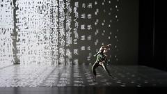 _9040442 (黎島羊男) Tags: 雲門 關於島嶼 林懷民 formosa cloudgatedancetheatre cloudgate dance theatre linhwaimin olympus em1markii zuiko 1454mm