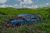 into the wild (riccardo nassisi) Tags: rust rusty rottame relitto ruggine scrap scrapyard auto abbandonata abandoned piacenza pc