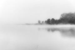 La otra orilla (kisko-Sonia) Tags: lago agua pantano lake niebla bruma sombras arboles siluetas blanco negro bw nubes fog misty mist nikon alava euskadi abstracto orilla linea d750 trees water reflejo reflection shadows