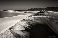 The Sands Of Time (Mimi Ditchie) Tags: oceano oceanodunes dunes sanddunes sepia monochrome blackandwhite landscape seascape water pacificocean