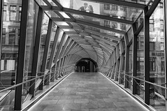 Tunnel vision (Lee Chu) Tags: sonynex6 batis25 toronto ontario canada eatoncentre hudsonsbay helix bridge downtown project365
