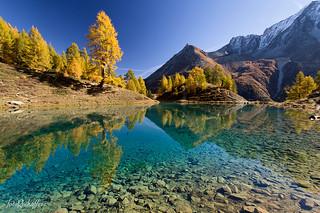 Autumnal Paradise
