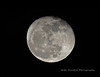 Full Moon 11/5/17 (Mike Woodfin) Tags: mikewoodfin mikewoodfinphotography moon photo picture photography photograph photos photoshop pretty canon contrast cool fuji florida fl moonscape mars night nightshot moonshot lunar lunarphoto nikon nature nighttime crater craters astro heavens highcontrast maninthemoon
