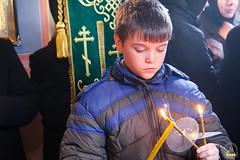 42. Блгв. кн. Александра Невского в Богородичном 06.12.2017