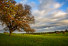 pastorale (stevefge) Tags: 2017 autumn beverley uk landscape trees bomen fields sky yorkshire eastyorkshire westwood reflectyourworld