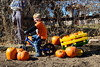 1177 (StriderBikes) Tags: 12 2017 blonde blue boy classic jeans october photocontestentry proud pumpkin
