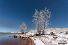 Red Beach White Trees (kevin-palmer) Tags: lakedesmet wyoming november fall autumn cold snow snowy frost frosty rimeice white night sky stars astrophotography astronomy blue clear moonlight moonlit beach water nikond750 fog foggy freezingfog trees tamron2470mmf28 red sand starry
