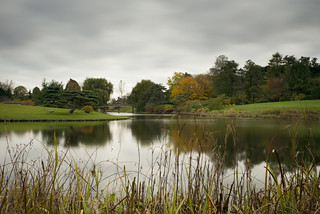 looking at the Japanese Gardens on a dark day