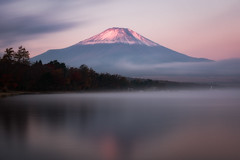Pink Fuji over Lake Yamanaka (Yuga Kurita) Tags: fuji mt mount fujisan fujiyama japan lake yamanaka yamanakako snowcapped pink reflection long exposure autumn trees horizontal outdoors photography nikon sigma 24105mm d810a clouds cloud