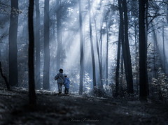 Enchanted (iwona_podlasinska) Tags: forest blue iwona podlasinska fog mist rays light kids children