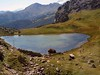 Alpine Pond 159 (saxonfenken) Tags: day5e30 159austria 159 pond austria dolomites shed people distance distant thumbsup