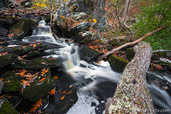 3-watermark (Brian M Hale) Tags: hudson ma mass massachusetts new england newengland usa river stream water waterfall tree woods small autumn leaves fall brian hale brianhalephoto outside nature outdoors