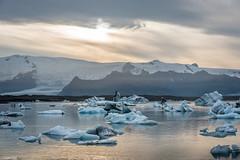 Jökulsárlón Lagoon - Iceland (Toine B.) Tags: iceland jokulsarlon landscape paysage nikon d750 hoya mer océan sable ciel eau plage sea glacier iceberg sigma 70200