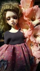DiMdoll Laia (makarrena) Tags: dim laia bjd msd lutsbody luts dollphie dolls