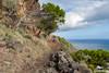 La Gomera 2016 (AviationPhoto.ch) Tags: 2016lagomera canarias canaryislands kanarischeinseln lagomera spanien urlaub canon canonpowershotg11 61305mm 1612041025007358 adobelightroom elessarch aviationphoto