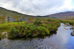Wicklow Mountains (ivlys) Tags: irland ireland èire countywicklow wicklowmountains nationalpark ruine ruin bach brook heide heather stkevinsway berge mountains landschaft landscape natur nature ivlys