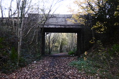Bridge under Gilroyd Lane, Dodworth    Silkstone - Wath old railway    November 2017 (dave_attrill) Tags: bridge dodworth great central railway electrified woodhead sheffield victoria manchester picadilly closed 1970 1955 stocksbridge engine transpennine upper don trail penistone wortley wadsley neepsend dunford thurgoland tunnel oxspring barnsley junction huddersfield allweather cycleway bridleway footpath remains silkstone 2016 1981 dove valley no1 road tr gilroydlane worsbroughbranch