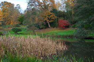 Ightham Mote Garden