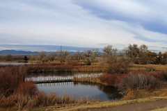 A Change in the Weather (Patricia Henschen) Tags: rockymountainarsenal nationalwildliferefuge commercecity colorado lakemary clouds pathscaminhos frontrange mountains highplains autumn lake wetland boardwalk
