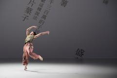 _9040152 (黎島羊男) Tags: 雲門 關於島嶼 林懷民 formosa cloudgatedancetheatre cloudgate dance theatre linhwaimin olympus em1markii zuiko 1454mm