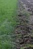 CKuchem-4868 (christine_kuchem) Tags: acker ackerland ackerrand agrarlandschaft bearbeitung ernte feld felder grünland landwirtschaft pflug sommer stoppelfeld gepflügt umbrochen