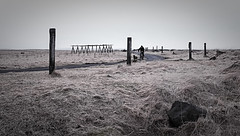 Remembering Iceland (gorelin) Tags: iceland reykjavik bicycle dog walk sea fujifilm x100 35mm road