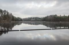 Höytiäinen - Finland (Sami Niemeläinen (instagram: santtujns)) Tags: lake järvi suomi finland kontiolahti puntarikoski syksy autumm fall