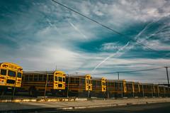 Los Angeles, 2017. (LATE PARADISE) Tags: losangeles la inglewood ricohgrii grii schoolbus yellowbus streetphotography