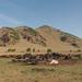 1706_mbe_mongolia_arrkhangai province_terhiyn tsagaan nuur np_014