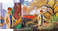 Autumn Tag Game  - A WALK IN CENTRAL PARK (ModBarbieLover) Tags: number 6 ponytail barbie vintage doll fashion fleece blue brown central park newyork elegant hat sheath shoes purse gold autumn fall