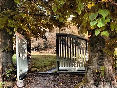 The open garden gate (Ostseetroll) Tags: deu deutschland geo:lat=5414713516 geo:lon=1040988578 geotagged plön prinzeninsel schleswigholstein herbst autumn gate tor