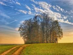 Schwäbische Alb (Blende2,8) Tags: autumn autumnlandscape herbstlandschaft fields germany swabiancountryside forest trees clouds sky landscape hochstand wolken bäume wiesen badenwürttemberg deutschland himmel iphone