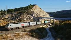 LOW COST RAIL Alicante - Valencia (lagunadani) Tags: lcr paisaje alicante elda lowcostrail 333 3333 rosco teco tren mercancias locomotora diesel 317 333317