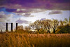 Sunday Slider (stellagrimsdale) Tags: sky clouds towers autumn sundaysliders pink purple trees grass orange nature fantasticnature silhouette