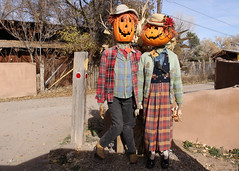 330/365 Mr. & Mrs. Pumpkin 2017 (Helen Orozco) Tags: pumpkins scarecrows harvest mrmrs pumpkinpeople fun crow harvesters 2017365 couple happy