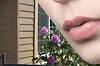 Lips (Scott 97006) Tags: face female woman lady lips lipstick sensual mouth